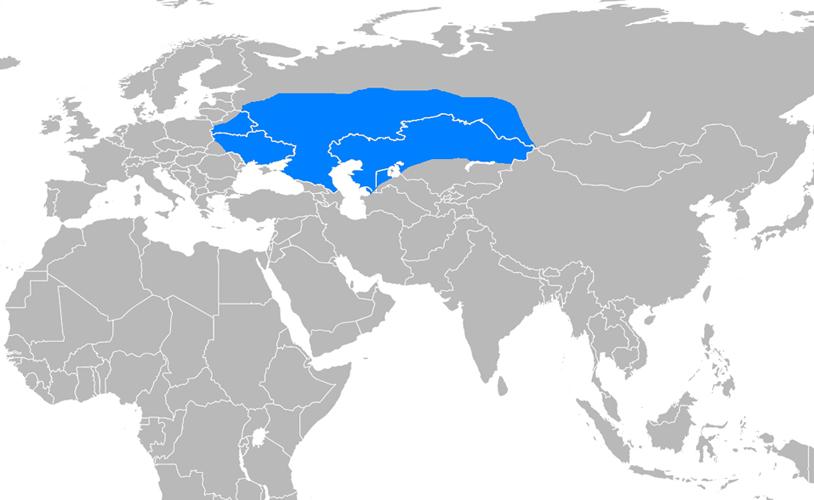 Altınordu Devleti Haritası - www.turkosfer.com