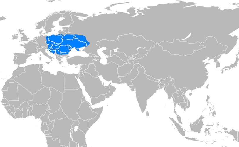 Avar İmparatorluğu Haritası - www.turkosfer.com
