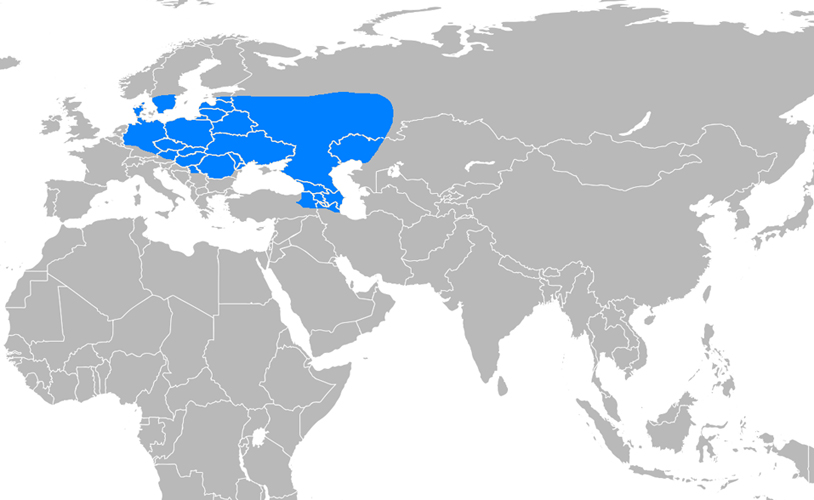 Avrupa Hun İmparatorluğu Haritası - www.turkosfer.com
