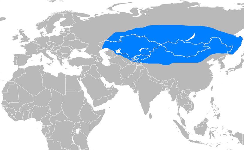 Büyük Hun İmparatorluğu Haritası - www.turkosfer.com