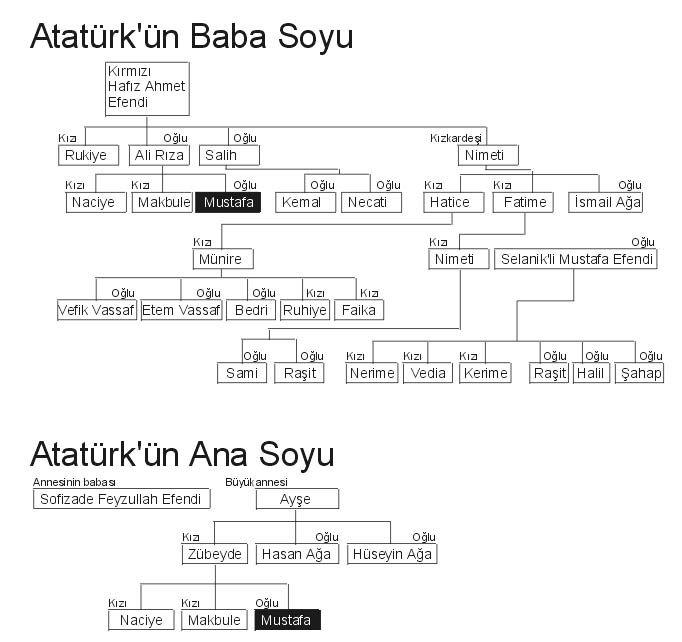 Atatürk'ün Soy Ağacı - www.turkosfer.com